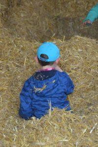 landwirtschaftliche Früherziehung Kindergarten Bauernhof