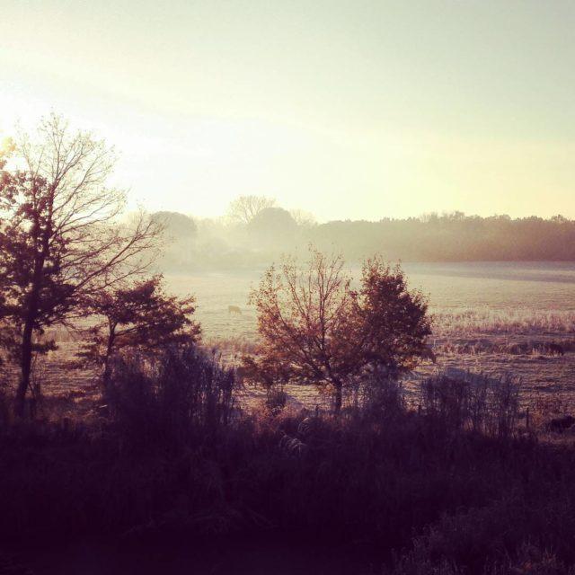Brrr frostige Aussichten beim Frhstck kaltheute herbst schneaussicht landvergngen farmlife
