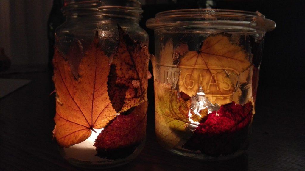 Blätter an Glas