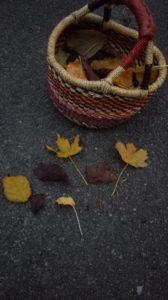 Blättersammeln Korb